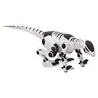 Mini Roboreptile 8165 - необычная электронная игрушка, являющаяся миниатюрным аналогом большого робота-динозавра от WowWee. Модель отличается высокой детализацией корпуса и качественным исполнением. Благодаря сегментной конструкции хвоста и шеи, движения и жесты рептилии так же натуральны, как и у настоящего ящера, обитавшего на земле миллионы лет до нашей эры. Mini Poboreptile функционирует от обычных батареек типоразмера «ААА» и практически в любой момент готова к эксплуатации.